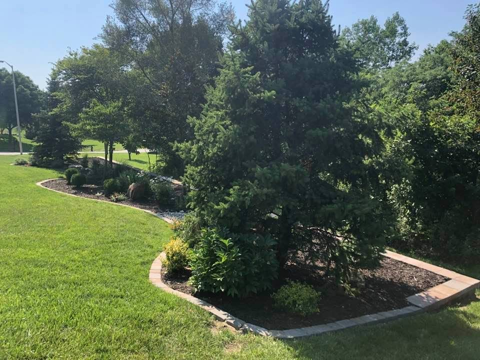 1_07_13_2021-Landscape-of-Week-bedding-area-with-trees-4