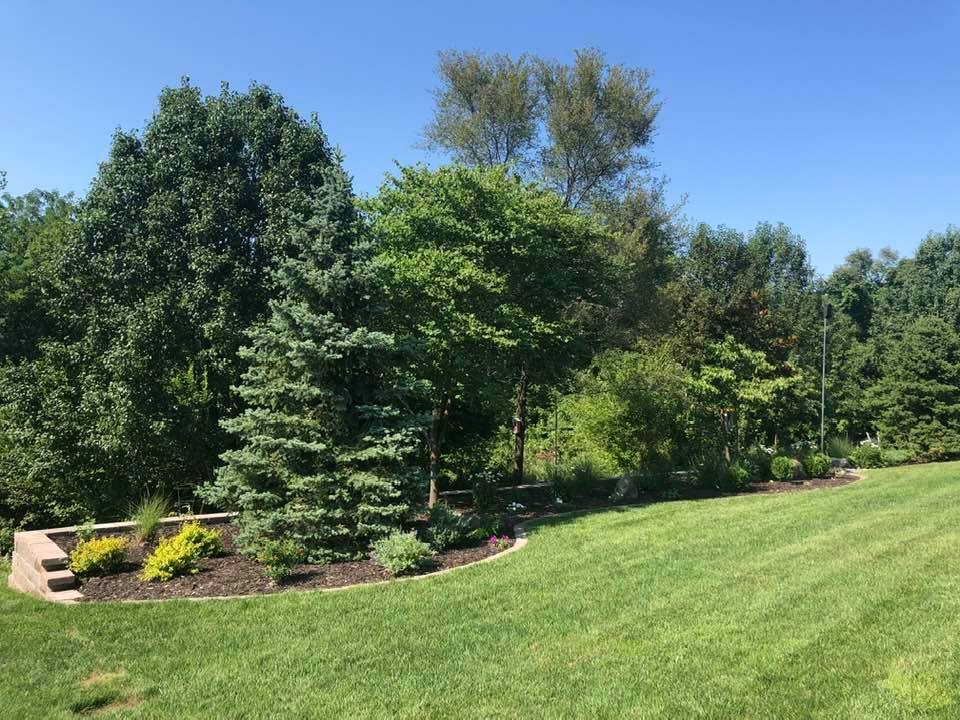 1_07_13_2021-Landscape-of-Week-bedding-area-with-trees