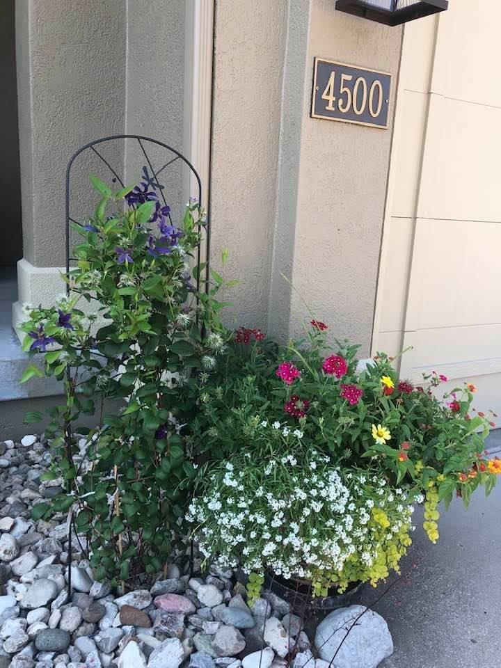 1_07_13_2021-Landscape-of-Week-front-porch-area-potted-plants