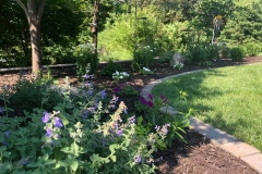 07_13_2021-Landscape-of-Week-bedding-area-with-trees-3
