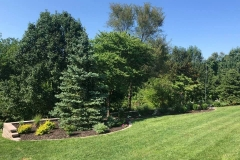 07_13_2021-Landscape-of-Week-bedding-area-with-trees
