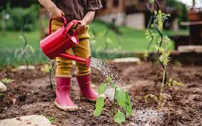 child watering can