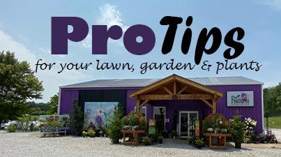 Garden Center Pro Tips
